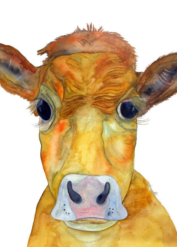 Angry Cow! | MOO COWS | Cow, Cow art, Cow pictures