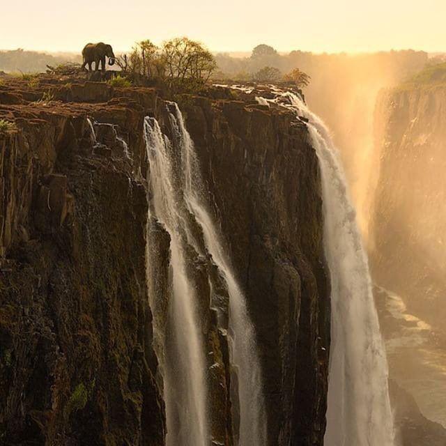 Bravo elefante en las Cataratas Victoria. Foto: ©Marsel Van Oosten. Publicado por: @AwesomeEarthPix