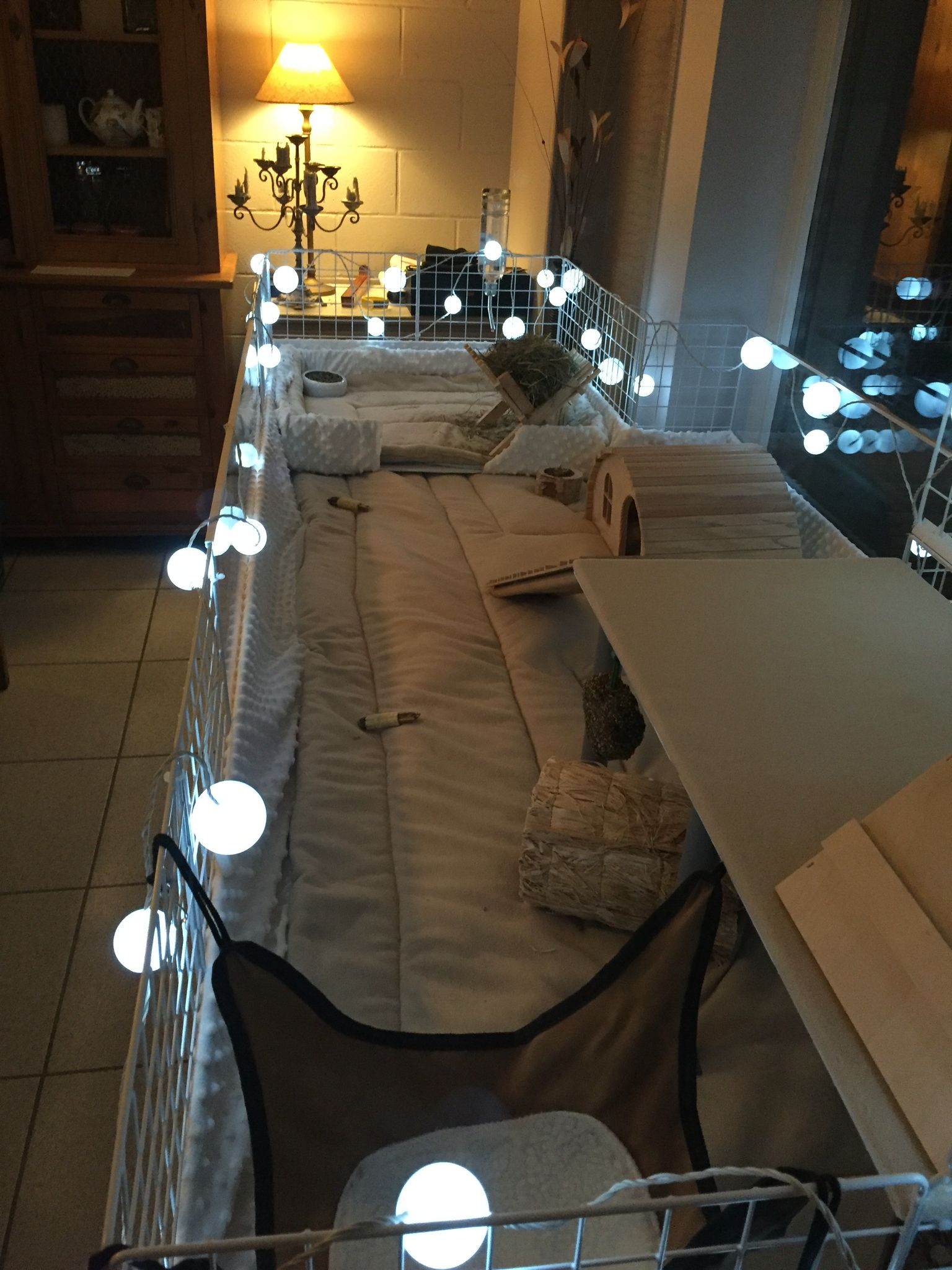 cavy cage animal cage lapin enclos lapin et soins de. Black Bedroom Furniture Sets. Home Design Ideas