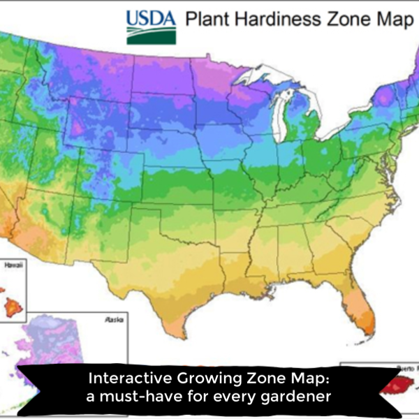 Check Out The Interactive Map For Plant Hardiness And Us Growing - Map-of-us-planting-zones