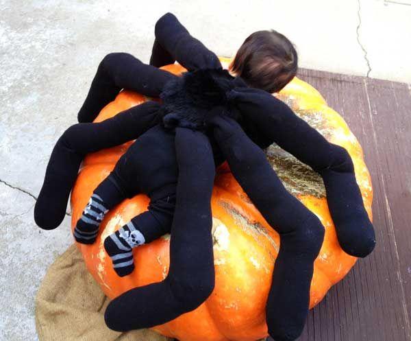 Pumpkins /& Spiders Custom Halloween Socks