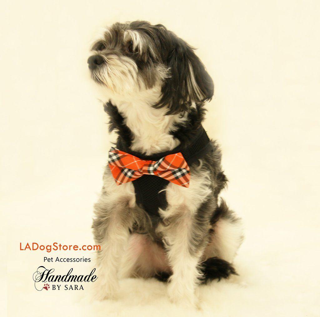 Ed Ellen Degeneres Bow Tie Comfort Dog Harness Size Medium Dog