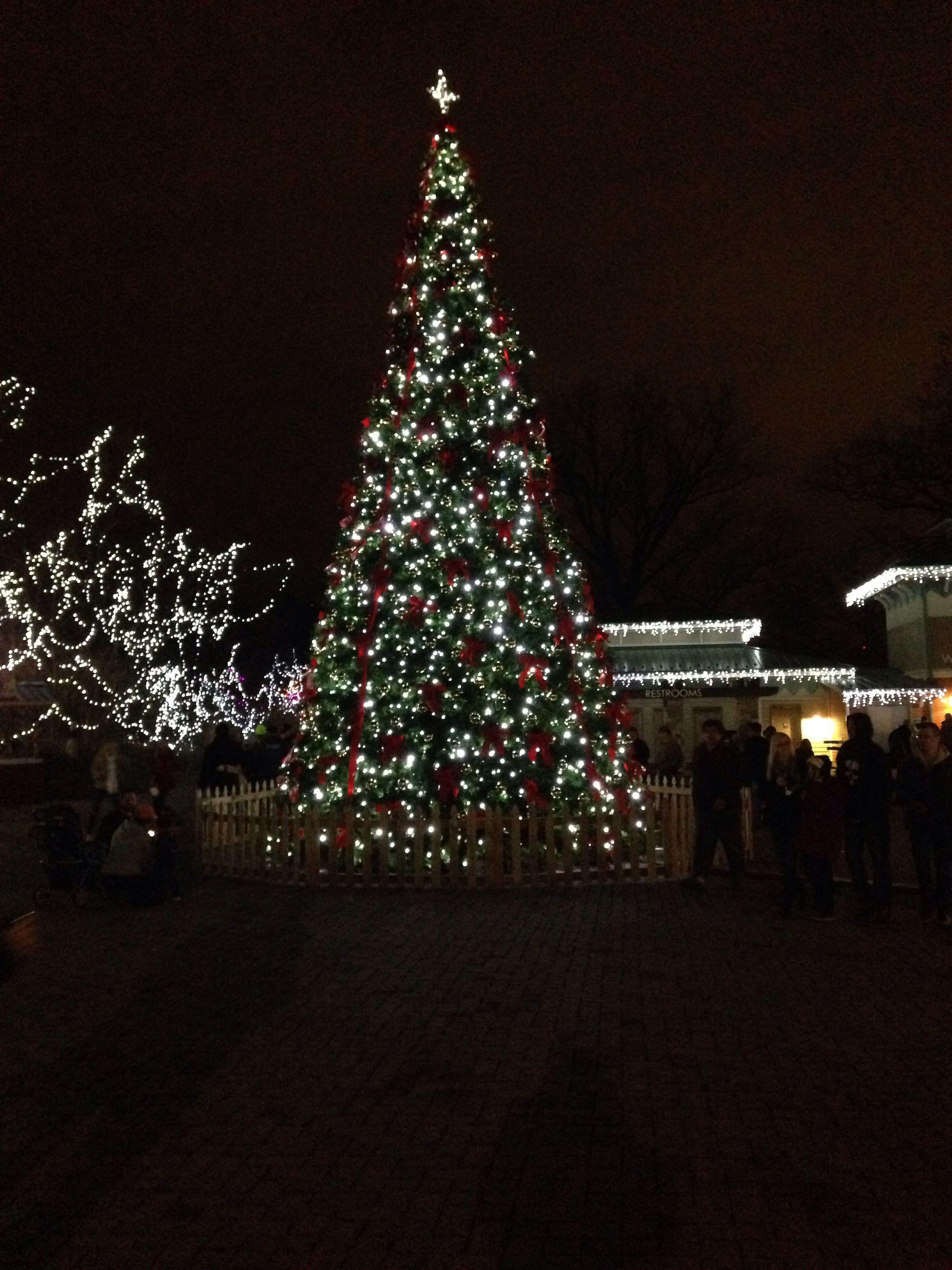 christmas tree festival of lights cincinnati zoo