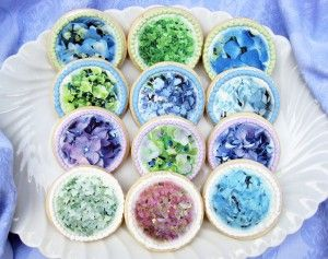 Photographic hydrangea cookies. No really.