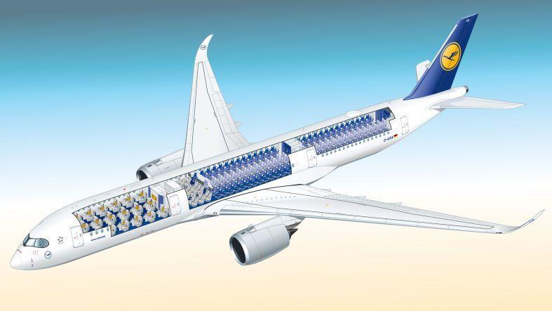 Sitzplan A350 900 Sitzplan Planer Vogelperspektive