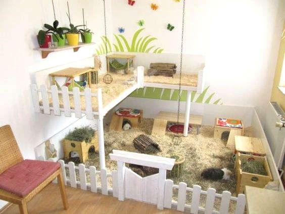 fabriquer une maison pour hamster pinterest cochons inde et lapin. Black Bedroom Furniture Sets. Home Design Ideas