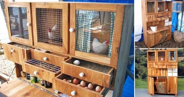 avoir des poules dans son jardin jardin pinterest. Black Bedroom Furniture Sets. Home Design Ideas