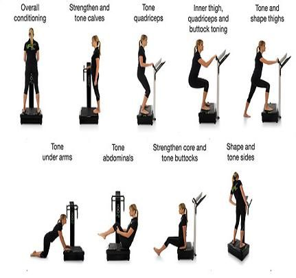 vibration plate exercises  vibration plate exercises abs