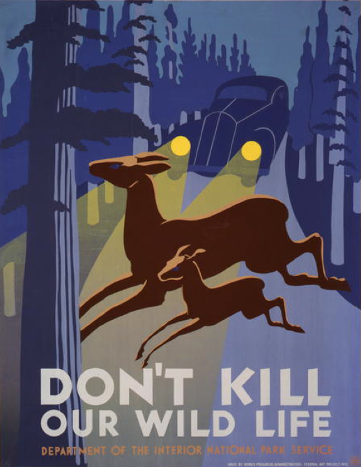 Poster design attributed to John Wagner, ca 1938, Don't kill our wild life, WPA.