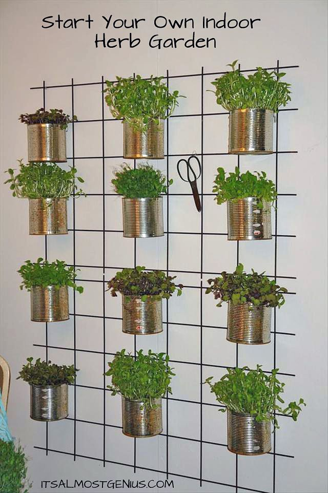 Creative indoor vertical wall gardens walled garden Herb garden wall ideas