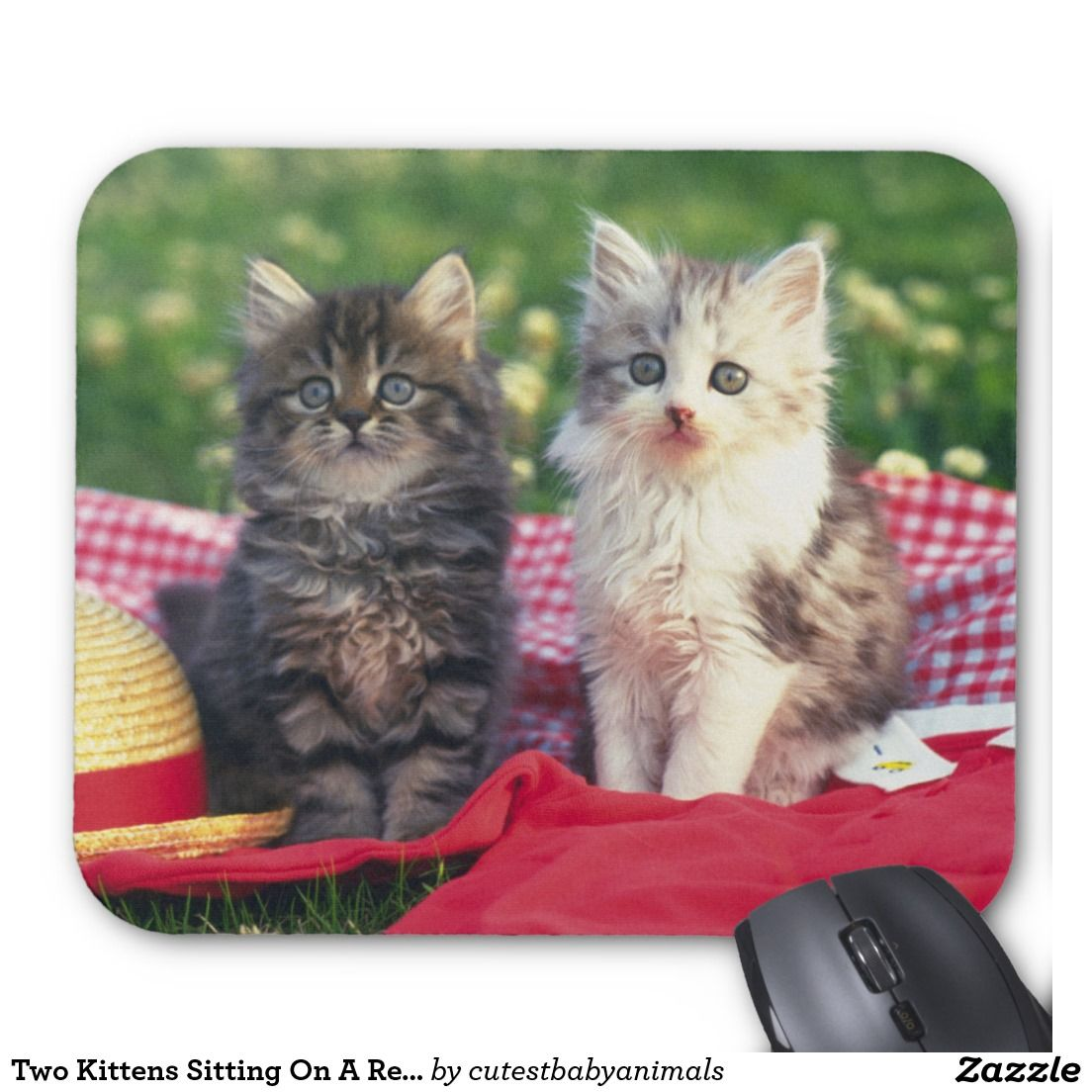 Two Kittens Sitting On A Red Colored Blanket Mouse Pad Zazzle Com Kittens Beautiful Kittens Cat Gif