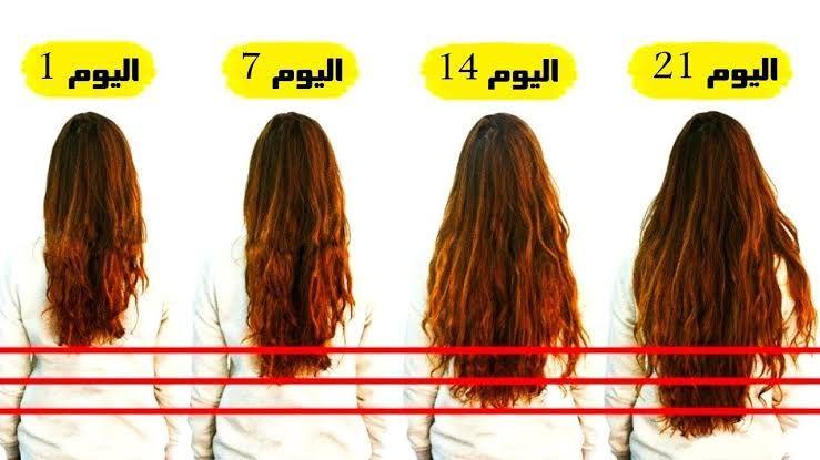 ماسكات إطالة الشعر بسرعة البرق شعرك أطول 7 سم في أسبوع سيحسدك عليه كل من حولك النيل الإخباري In 2020 Long Hair Styles Hair Styles Hair