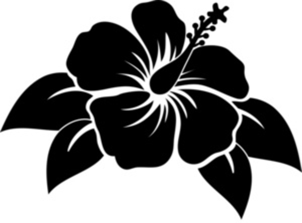 Hibiscus Free Images At Clker Com Vector Clip Art Online Royalty Free Public Domain Flower Silhouette Flower Clipart Images Flower Clipart