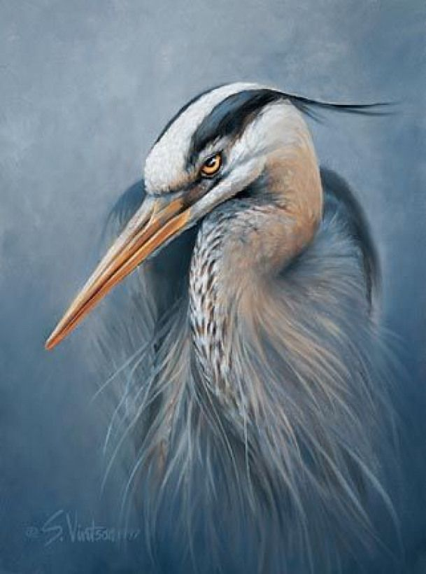 Blue Heron amp Egret spirit animals symbolize being calm being at peace being u