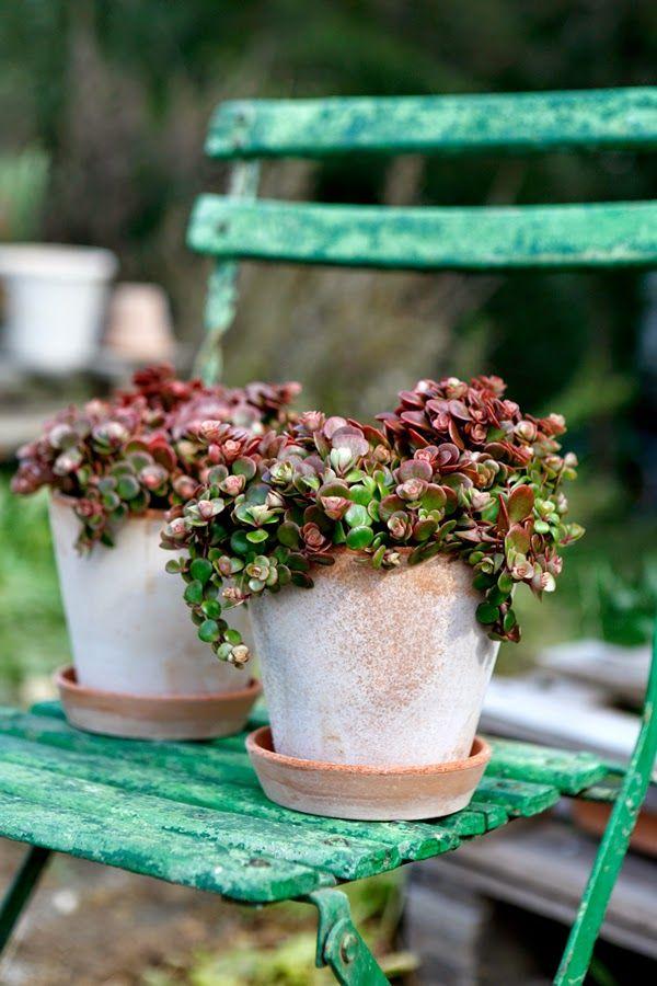 Bergspotter, Italien handmade pots | Tina Brok Hansen