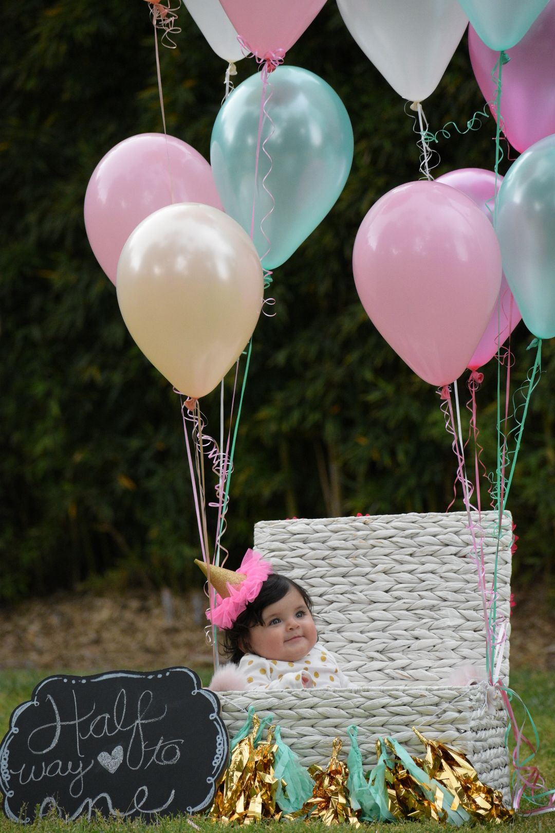 Half Birthday 6 Months Photo Shoot Baby Girl With Images Half