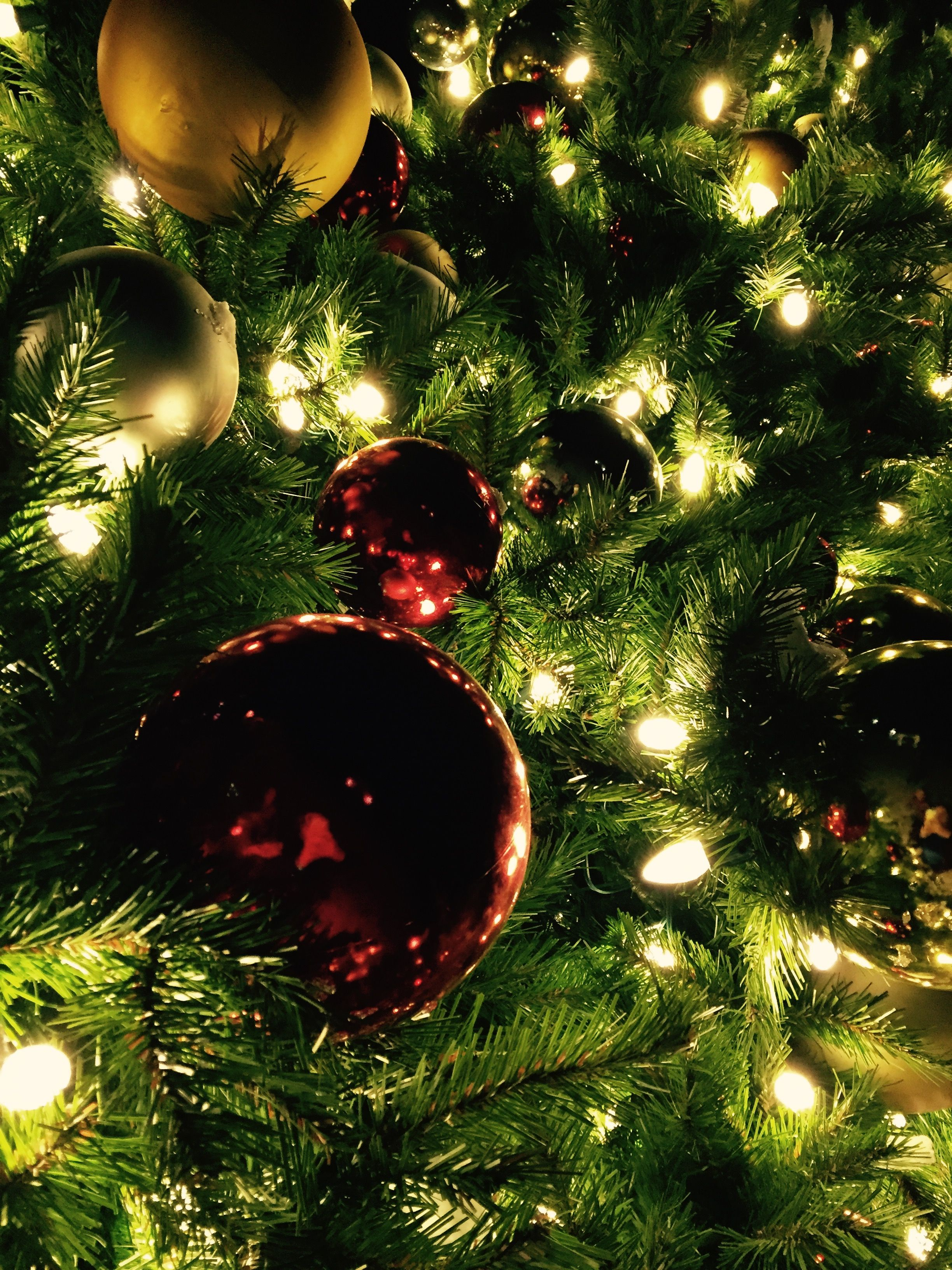 Christmas Iphone Wallpaper Tree Photography Wallpaper Christmas Tree Pictures Christmas Tree Photography