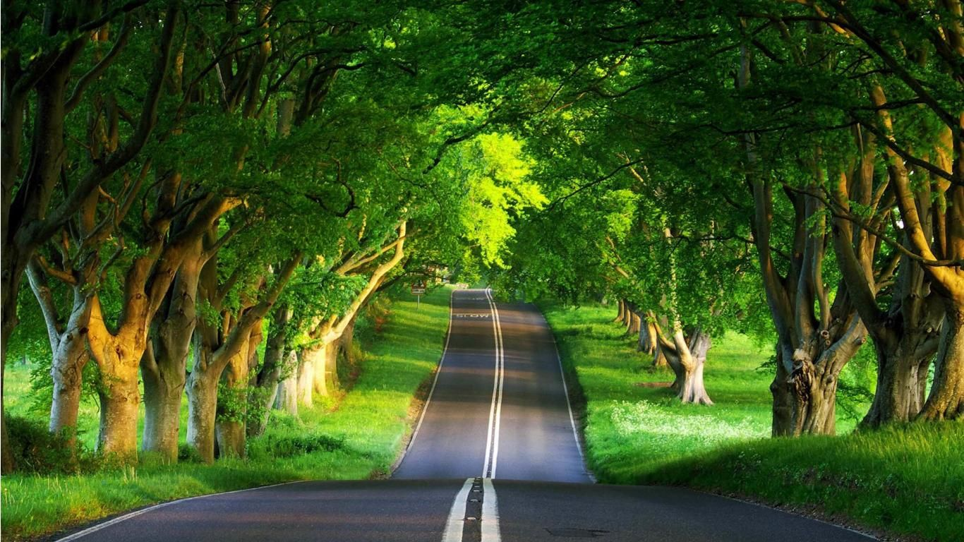 Free Desktop Wallpaper Description Free Download Green Road