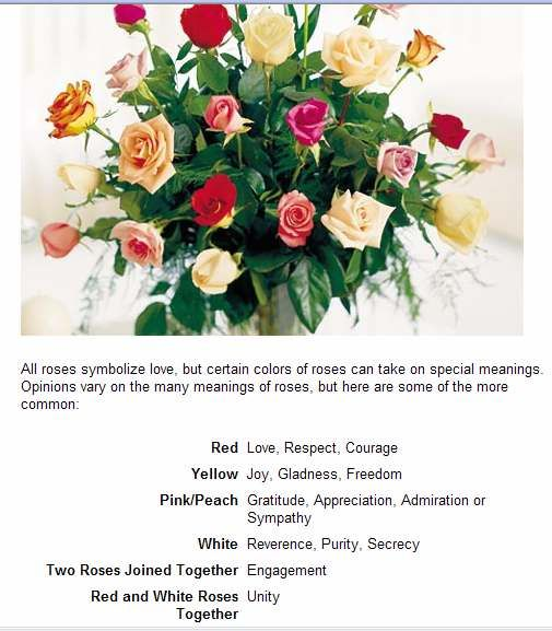 Spiritual Meaning Numbers And Colors Learn About Rose Color Meanings At Proflowers This Helpful Guide W Rose Color Meanings Yellow Rose Meaning Rose Meaning