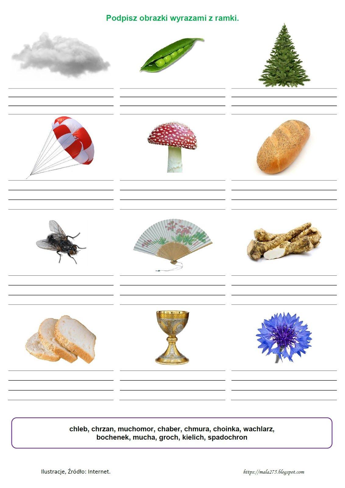 Blog Edukacyjny Dla Dzieci Wyrazy Z Z Speech And Language Alphabet Hand Lettering