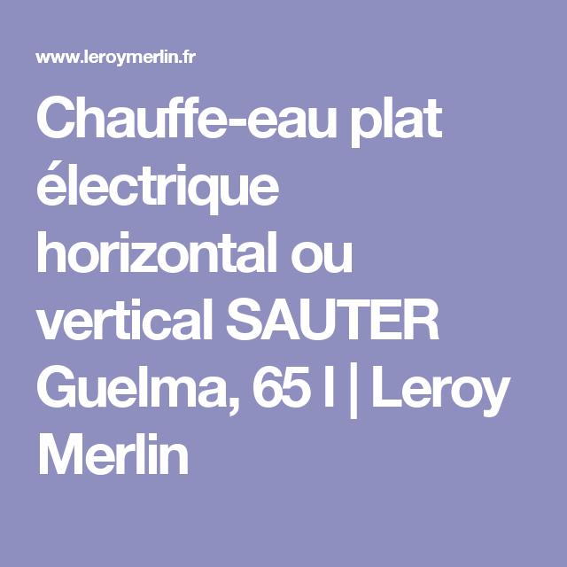 Chauffe Eau Plat Electrique Horizontal Ou Vertical Sauter Guelma 65