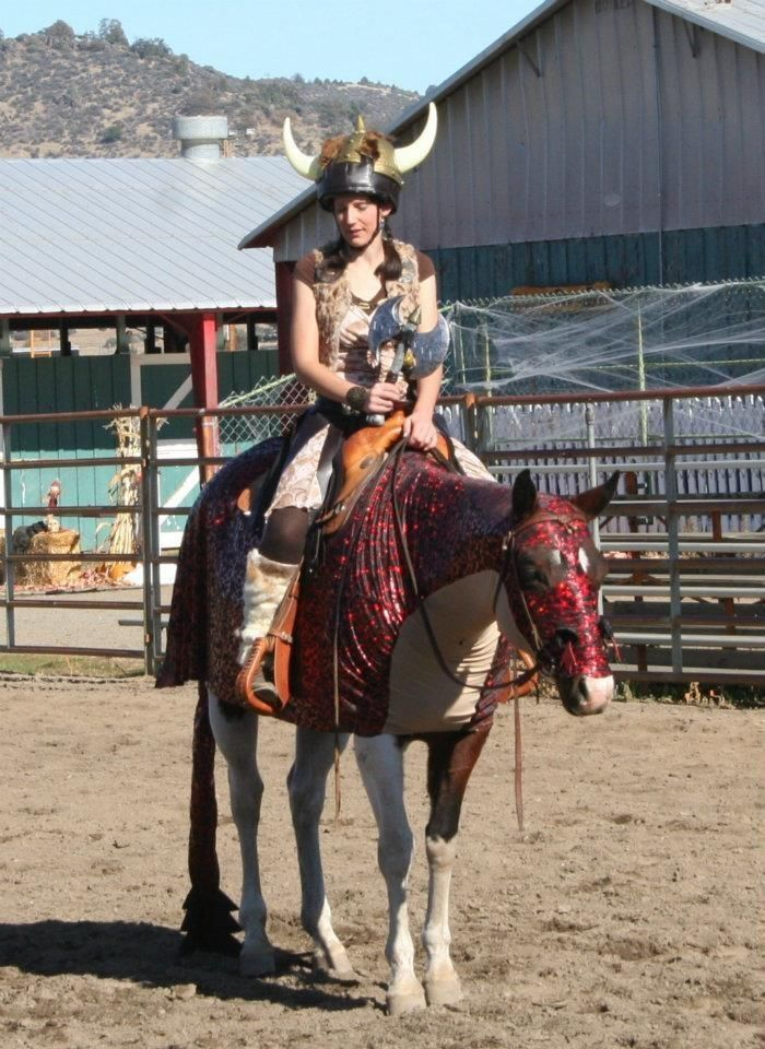 How To Train Your Dragon Mathea Turk Horse Halloween
