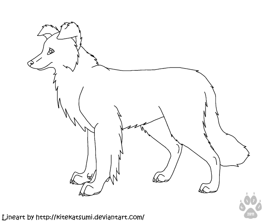 Border Collie Outline Free Msp Border Collie Lineart By Kitekatsumi D4b6itp Border Collies Collie Coloring Pages Border Collie