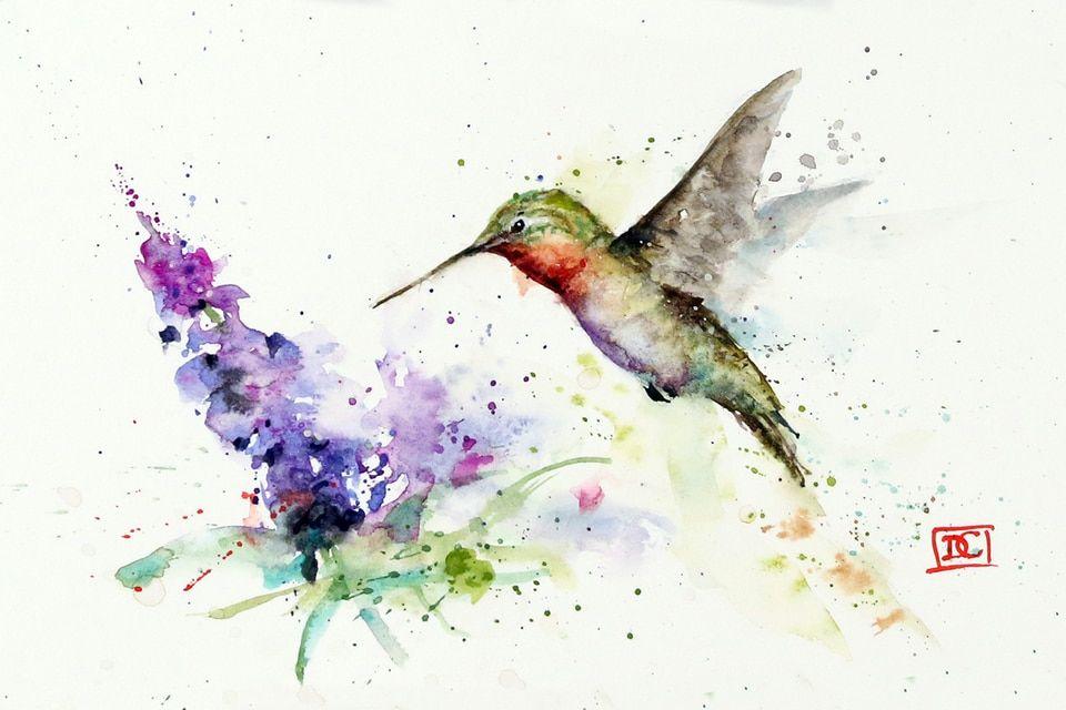 Hummingbird & butterfly bush