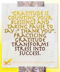 Gratitude transforms stress into success.  I love it!