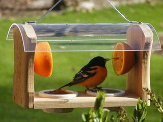 Кормушка для птиц изготовить своими руками