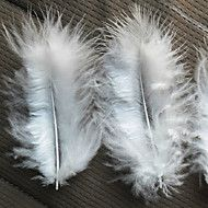 Chicken Feather Strip - Set of 100 Pieces – USD $ 11.99