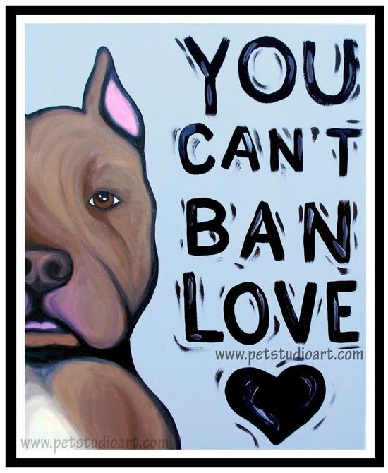 You can't ban love!