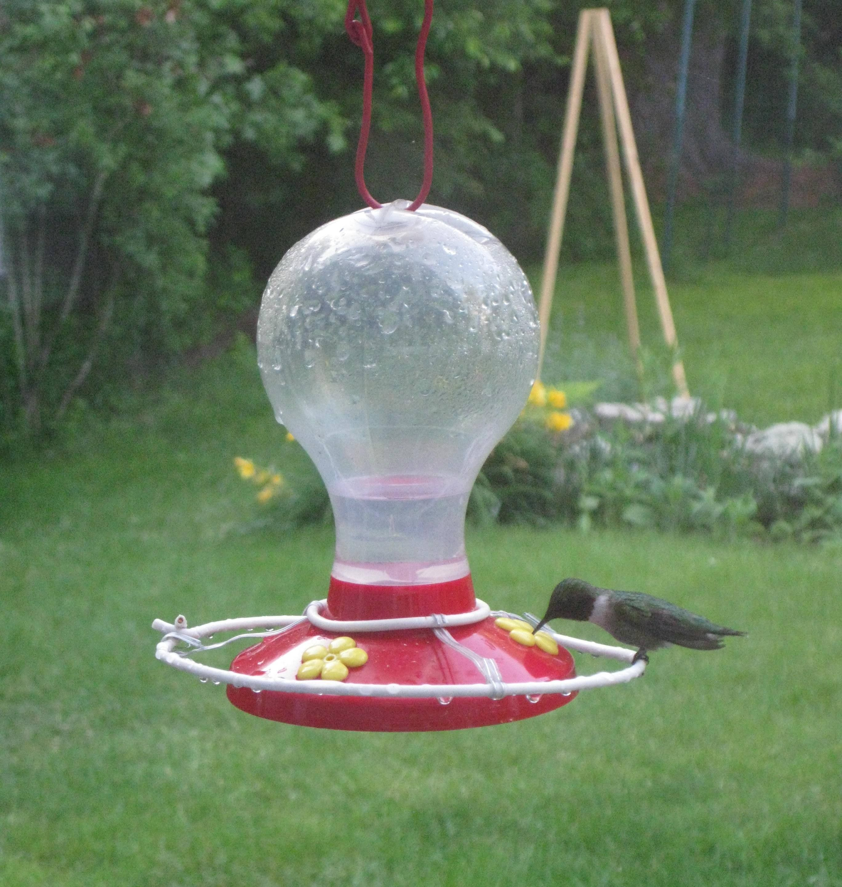 unique decorative hummingbird pole feeders bird full for beautiful image feeder