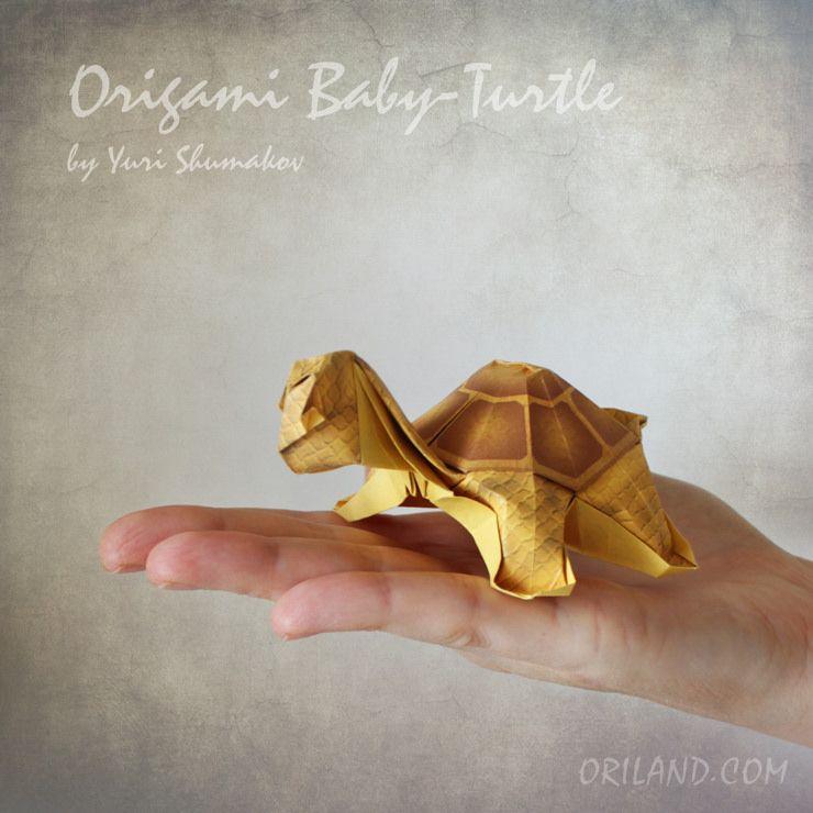 Photo of Mein kleiner Freund, Origami Baby Turtle :-)