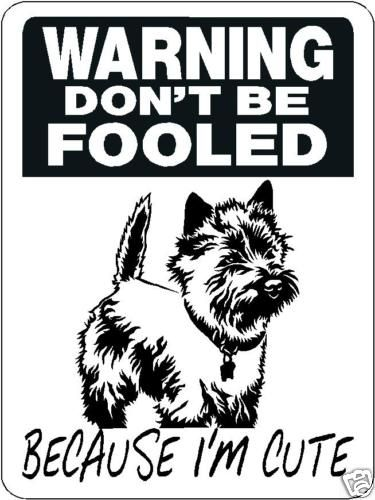 800 CAIRN TERRIER ALUMINUM DOG SIGNS 9 x 12 NEW IDEM