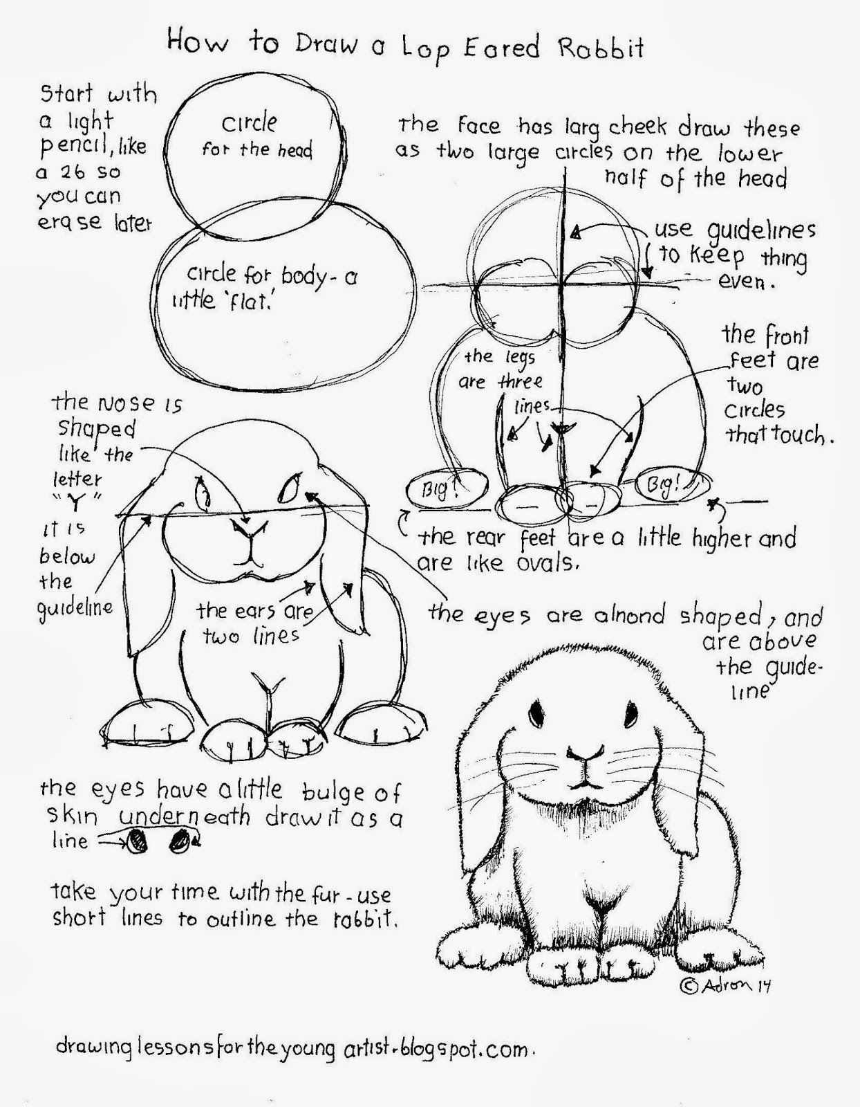 How To Draw A Lop Eared Rabbit Free Worksheet How To Draw