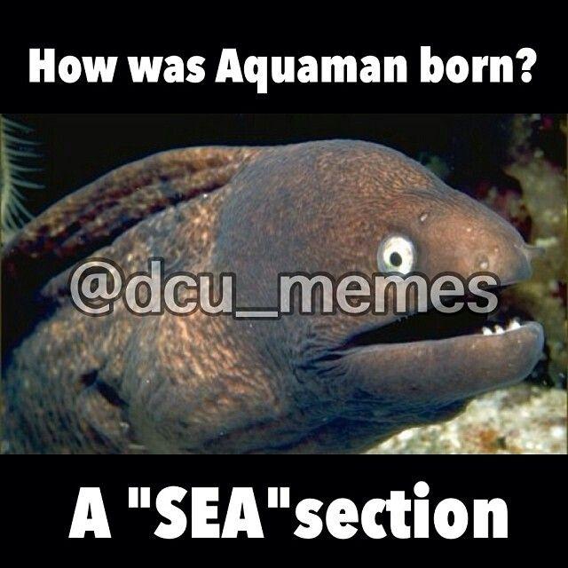 How was Aquaman born?