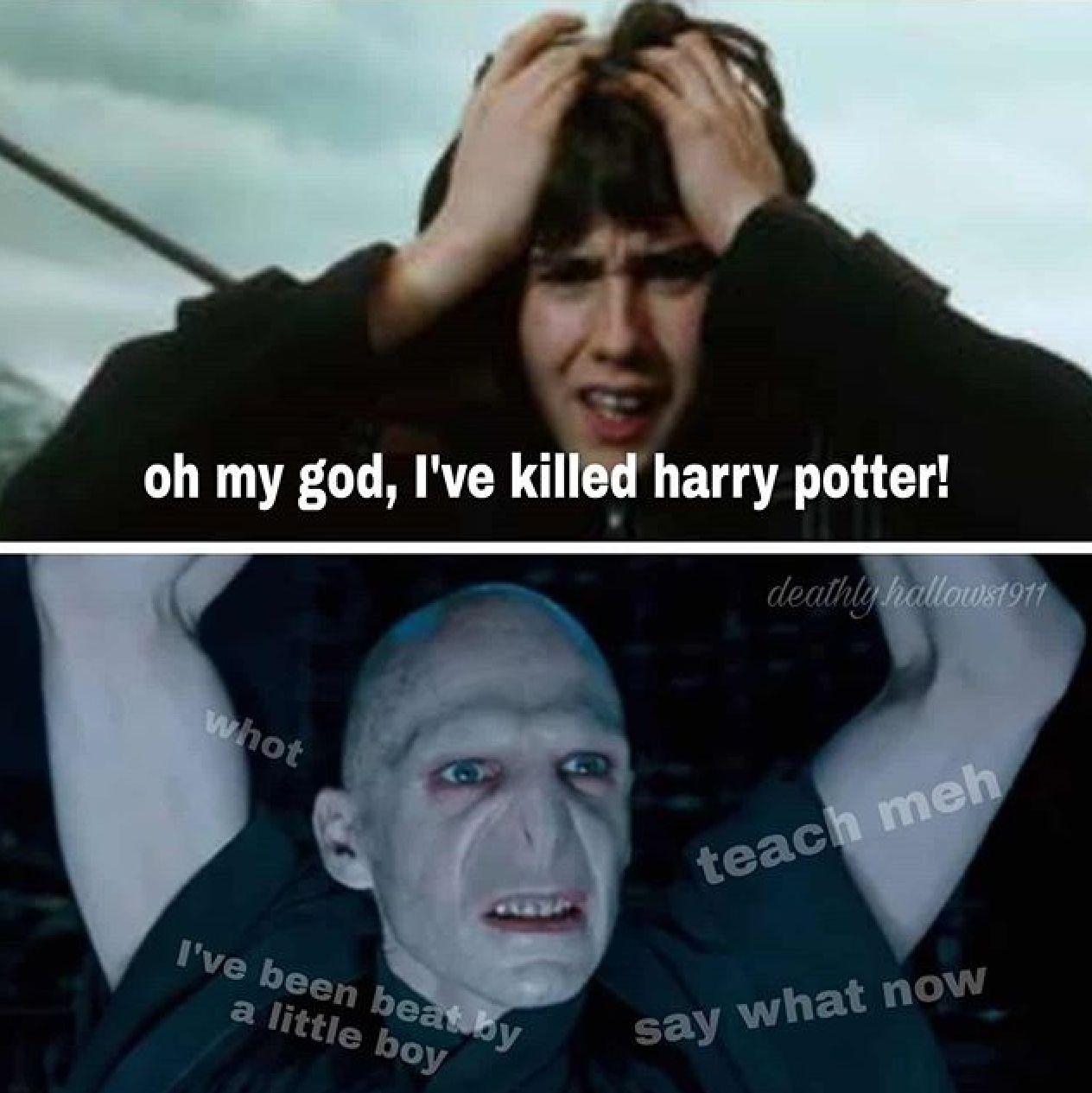 Hp Meme In 2021 Harry Potter Harry Potter Funny Memes