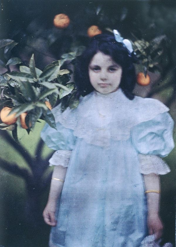 Vintage photograph of a young girl in a pale dress standing in front of an orange tree