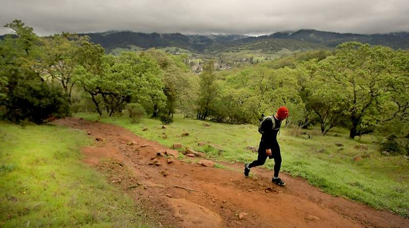 Best Sonoma County Trails For Nature Loving Runners Sonoma