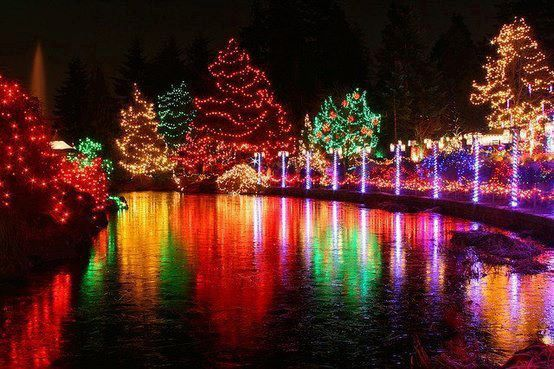 Christmas Lights Love The Way They Reflect On The Water Also Love The Way Ya Heart Ref Christmas Light Show Beautiful Christmas Scenes Christmas Lights