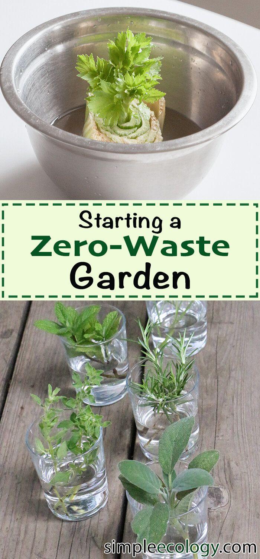 Starting a Zero Waste Garden