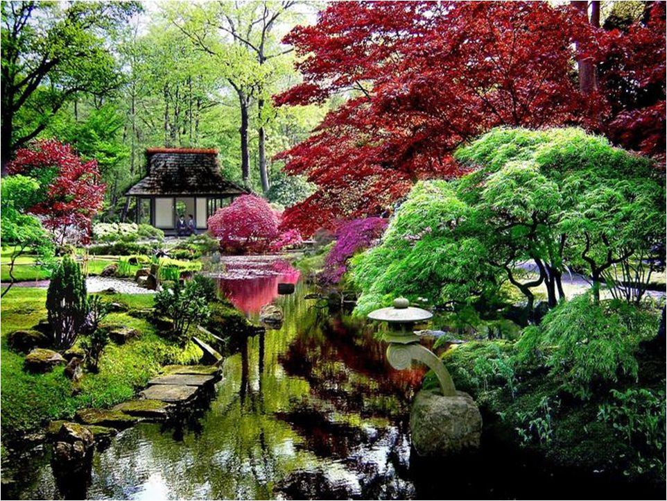 Jajrdín Japones Buenos Aires Japanese Garden Japan Garden Zen Garden