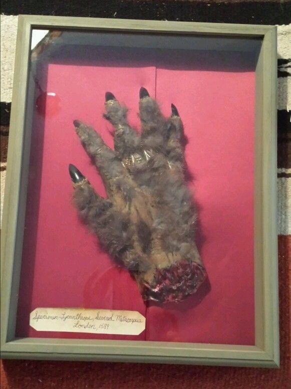 Werewolf Severed Hand halloween prop idea Build a Haunt - Witch