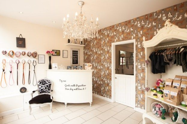 Kew Check Out Our Gallery Page Dog Grooming Salons Pet Grooming Salon Grooming Shop