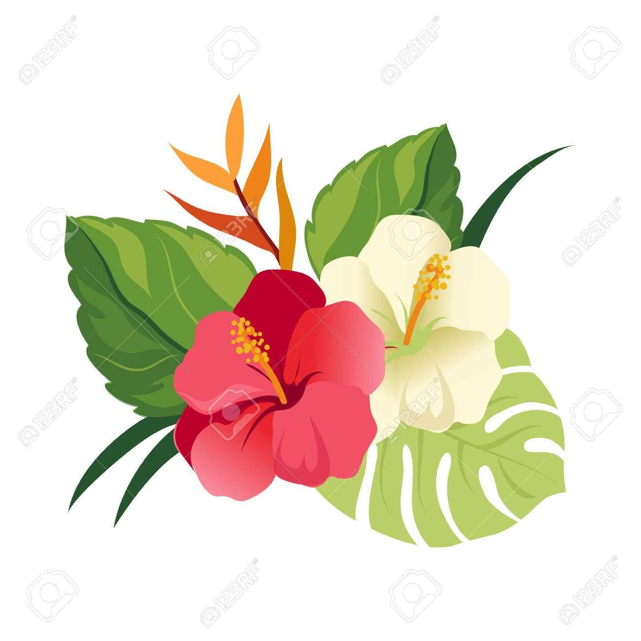 Image Result For Hawaiian Hibiscus Flower Preto E Branco Folhagem