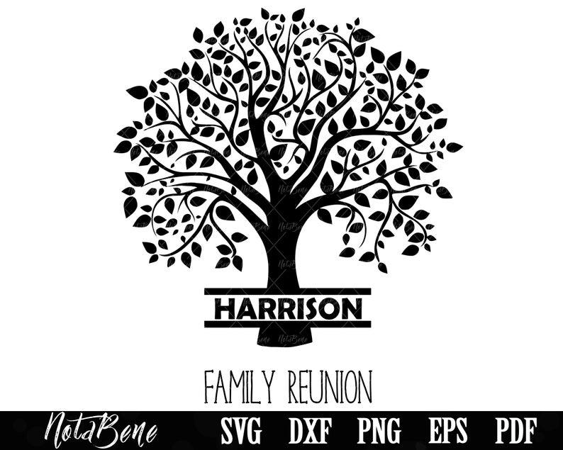Family Reunion Svg Family Tree Svg Family Svg Tree Monogram Etsy In 2021 Tree Svg Family Tree Family Reunion