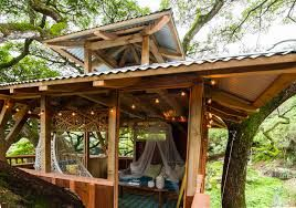 treehouse masters inside google search - Treehouse Masters Inside