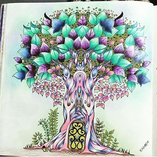 Coloring Secrets Instagram Profile