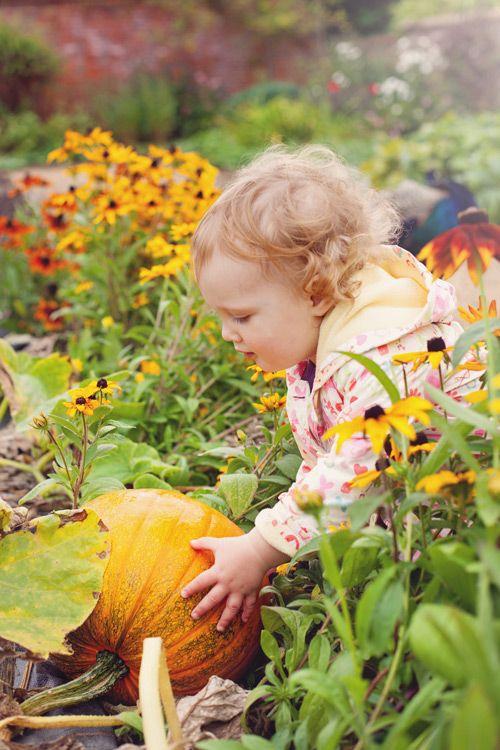 pumpkin patch...